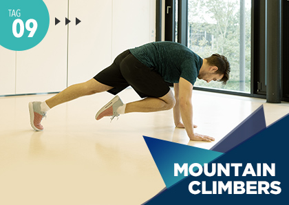 Fitness Challenge Tag 9: Mountain Climbers